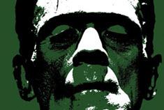 Frankenstein-boek-schrijven-singularity-miriam-wesselink-2-klein