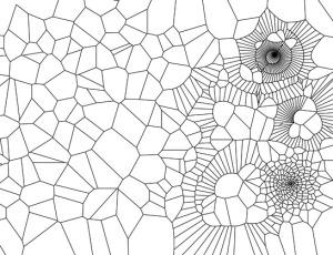 Structuur-boek-schrijven-singularity-miriam-wesselink
