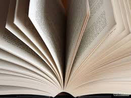 Eindzin boek schrijven schrijftips singularity miriam wesselink 2