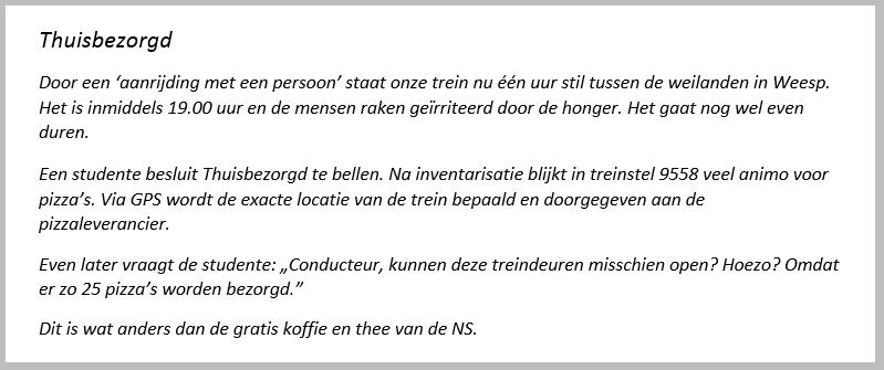 Ikje Thuisbezorgd schrijftips boek schrijven Singularity Miriam Wesselink