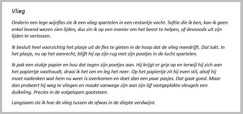 Vlieg schrijftips boek schrijven Singularity Miriam Wesselink