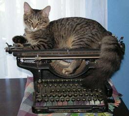 Twijfel boek schrijven schrijftips singularity miriam wesselink 8