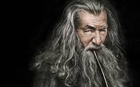 Hokjesdenken boek schrijven schrijftips singularity miriam wesselink Gandalf