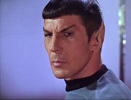 Hokjesdenken boek schrijven schrijftips singularity miriam wesselink Spock