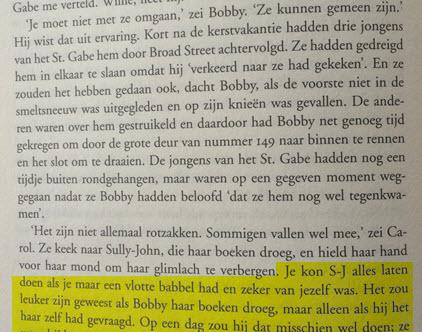 Stephen King perspectief schrijftips  boek schrijven Singularity Miriam Wesselink 10
