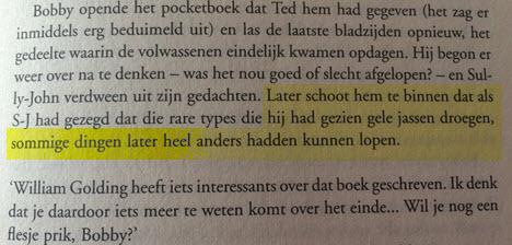 Stephen King perspectief schrijftips  boek schrijven Singularity Miriam Wesselink 2
