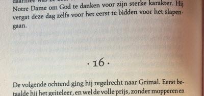 hoofdstuk schrijftips boek schrijven singularity miriam wesselink15