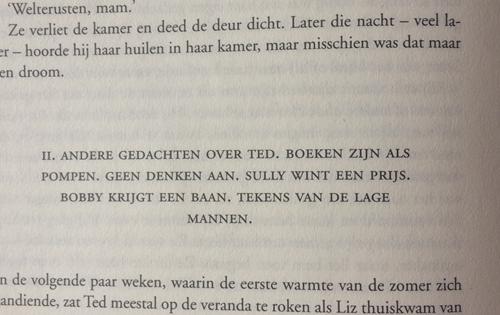 hoofdstuk schrijftips boek schrijven singularity miriam wesselink16