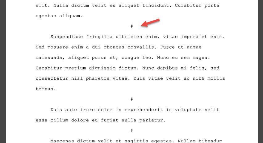 Scrivener boek schrijven schrijftips singularity miriam wesselink Afscheiders1