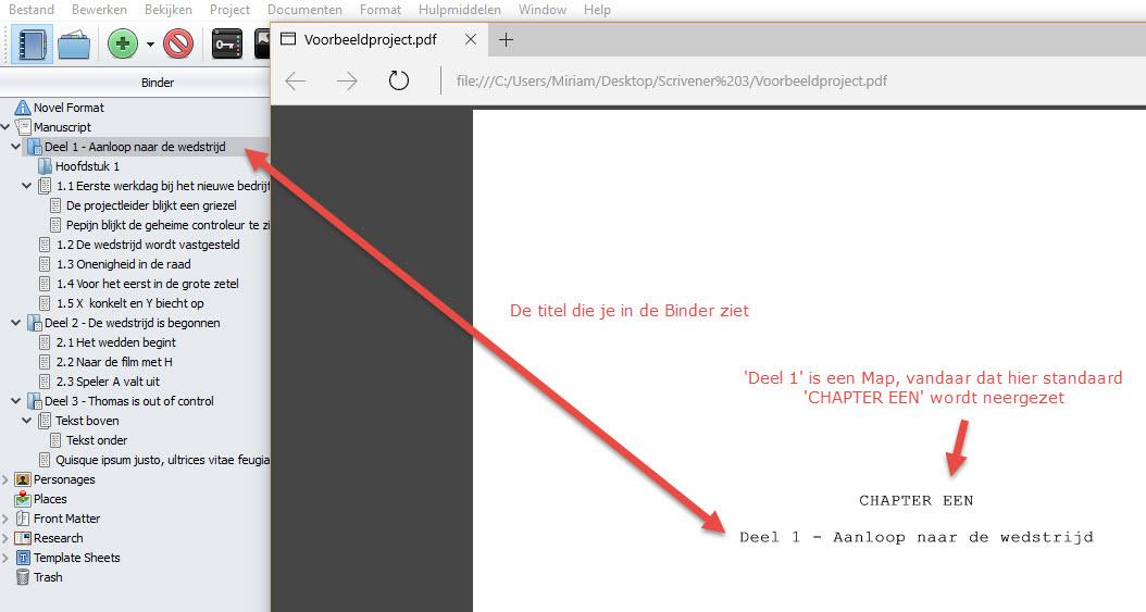 Scrivener boek schrijven schrijftips singularity miriam wesselink Vergelijk 1