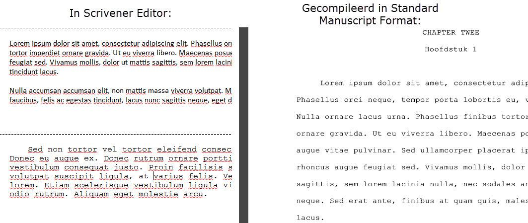 Scrivener boek schrijven schrijftips singularity miriam wesselink Vergelijk3