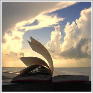 practicum-boek-schrijven-schrijftips-singularity-miriam-wesselink6
