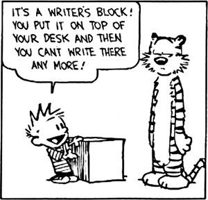 boek-schrijven-schrijftips-singularity-miriam-wesselink5