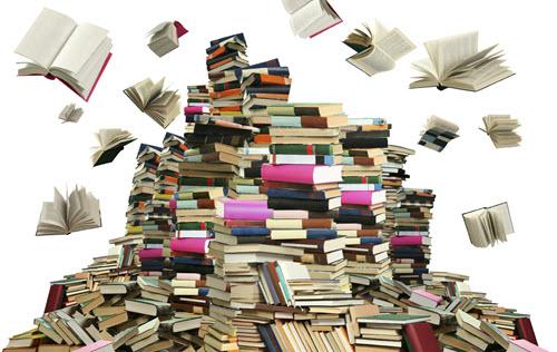 bestseller-boek-schrijven-schrijftips-singularity-miriam-wesselink5
