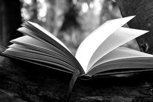 Serieus boek schrijven schrijftips singularity miriam wesselink2