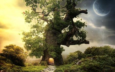 sciencefiction fantasy 1 boek schrijven schrijftips singularity miriam wesselink 4