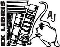 keurslijf boek schrijven schrijftips singularity miriam wesselink6